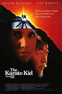 Download The Karate Kid Part III (1989) Dual Audio {Hindi-English} 720p [800MB]