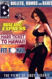 Hard Ticket To Hawaii (1987) UNRATED BluRay 720p [Dual Audio] [Hindi Dubbed – English] Eng Subs [18+]