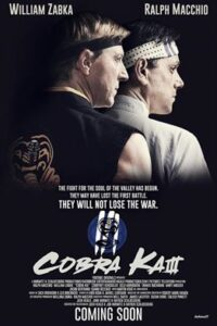 Download Cobra Kai Season 3 Complete [Hindi DD 5.1] Dual Audio | S03 All Episodes | WEB-DL 1080p 720p/ 480p [NF TV Series]