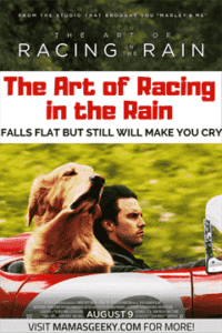 The Art of Racing in the Rain (2019) Hindi (HQ Fan Dub) + English (ORG) [Dual Audio] BluRay 1080p 720p 480p